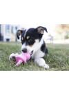 KONG Puppy Binkie, Rosa 3