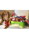 DoggieBag Julegave til Medium Hunder
