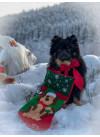 DoggieBag Julestrømpe Hundemotiv 3